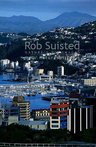 Looking over the CBD, and Chaffer's Marina, to Oriental Bay, Wellington, Wellington City District, Wellington Region, New Zealand (NZ) stock photo.